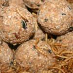 Vetbollen met meelwormen - met net 6 stuks